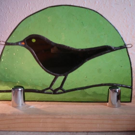 Blackbird in Sherwood
